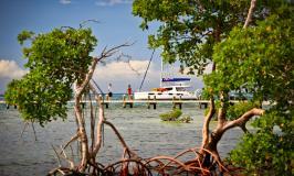 Hachet Cay